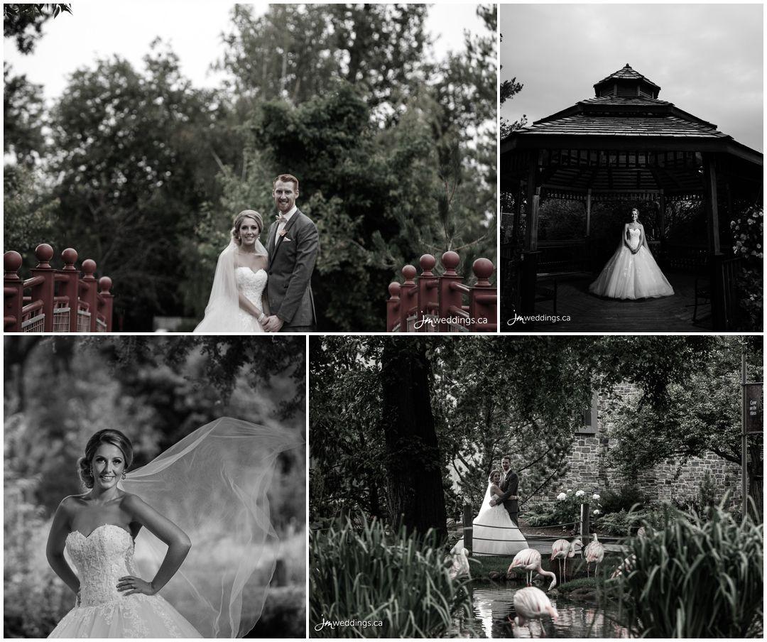 160806r_0719-Calgary-Zoo-Wedding-Photography-JM_Photography