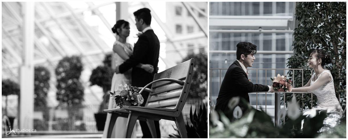 160910r_1707-calgary-wedding-photographer-devonian-gardens-jm_photography
